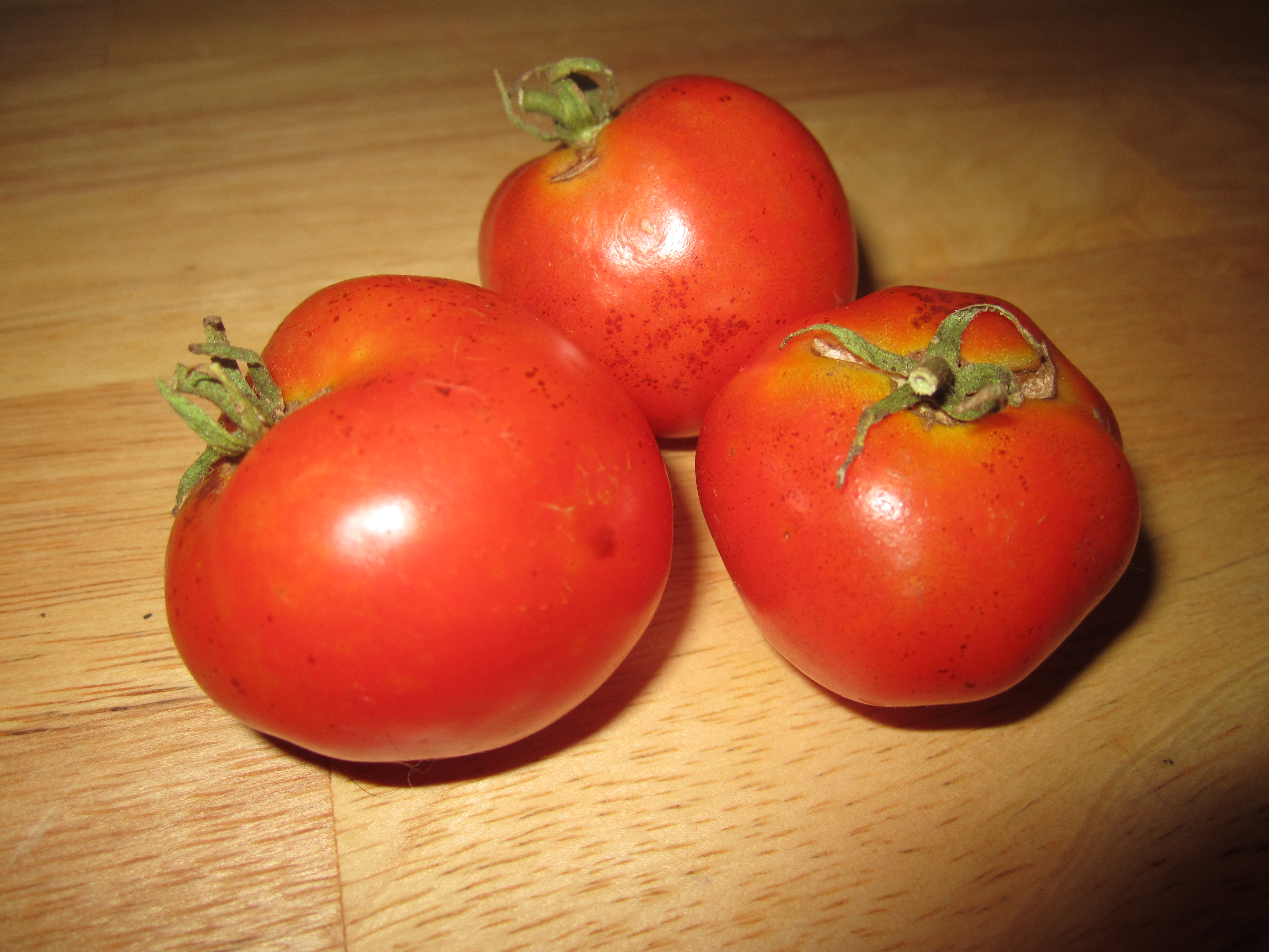 Drought conditions make for spotty tomatoes