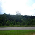 Mountain Forest #AugustBreak